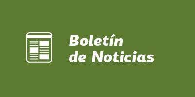 boletin-noticias